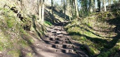 taking steps to move forward in the sunshine
