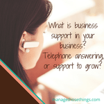 what is business support